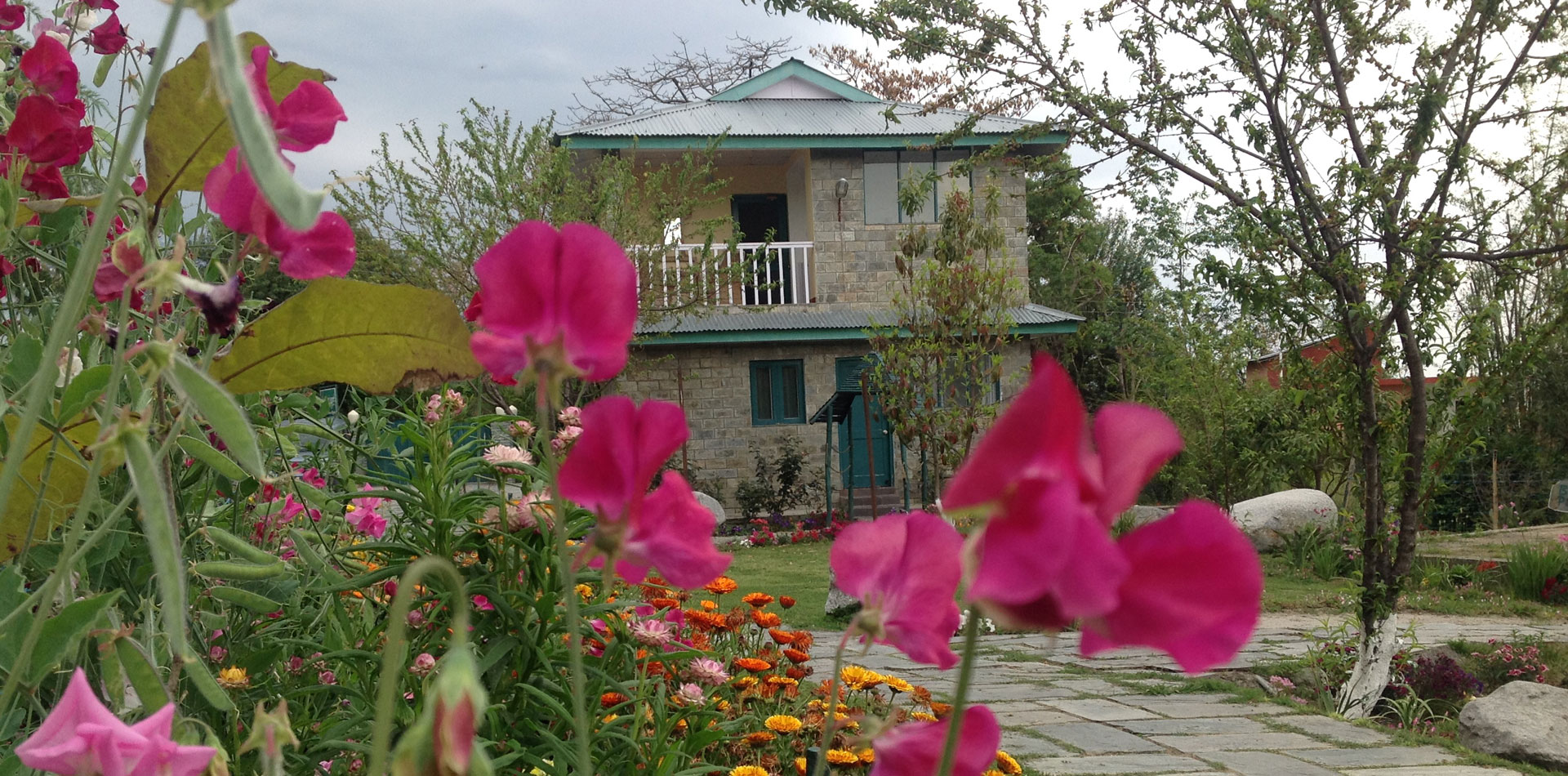 Hotels Resorts in Palampur